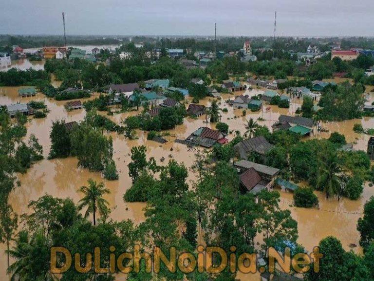 Năm 2020 này Việt Nam đã phải gánh chịu những tổn thất gì?