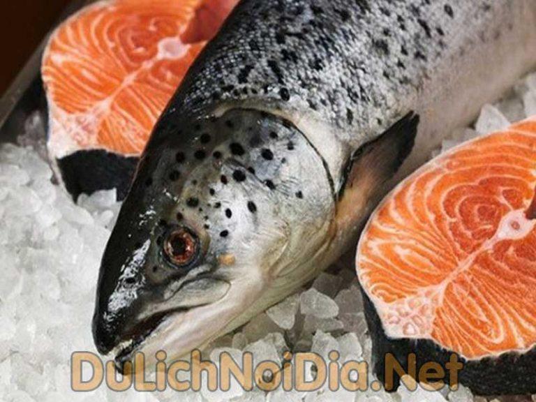 Theo bạn thì sashimi cá hồi tại sao là một món Nhật được yêu thích tại Việt Nam