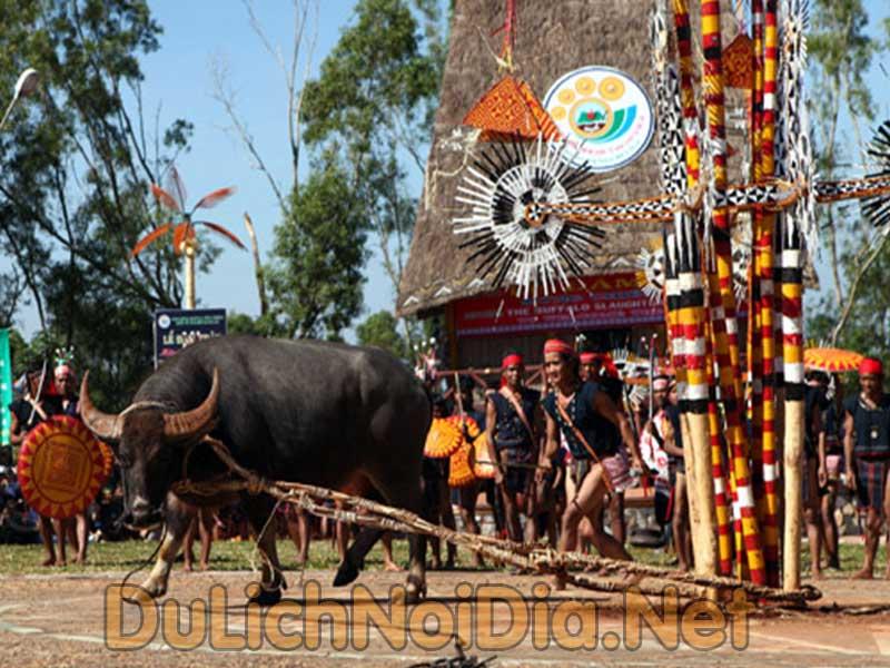 lễ hội xuân Tây nguyên còn gọi là lễ hội đâm trâu